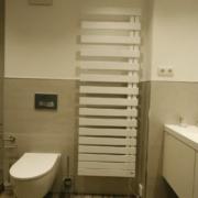 WC mit Sigma 50 Drückerplatte
